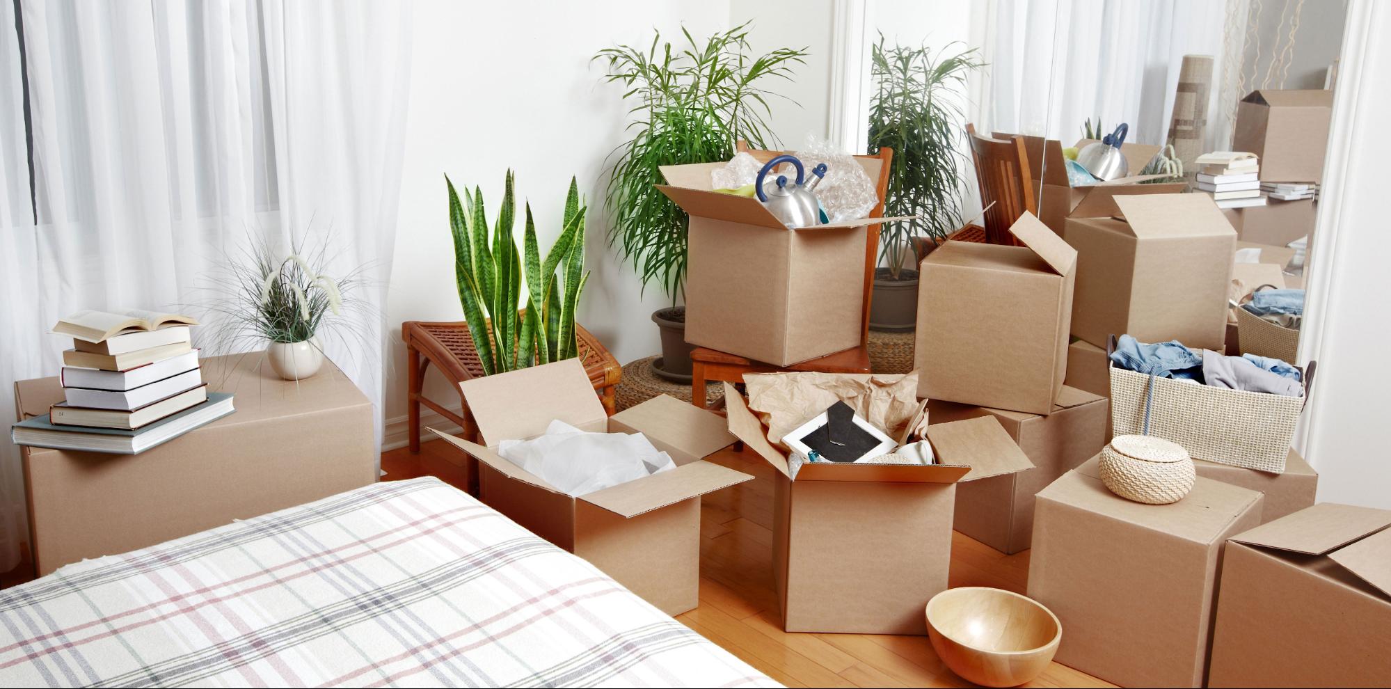 unpack one room